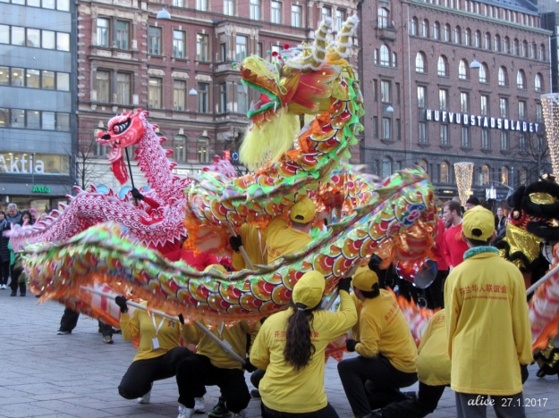 The Year of Rooster  img_3049c